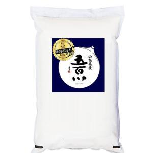 新米 米 10kg 五百川 新ブランド米 山梨県産 特別栽培米  平成30年産|manryo