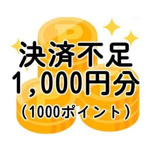不足分決済1,000円分(不足送料・オプション等)-ポイント全額決済の方や増額できない決済を選択した方対象