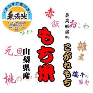 最高級もち米 29年産宮城県産みやこがねもち 白米10kg|manryo