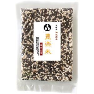 抗酸米 神減脂米 「豊楽米」 100g x 5袋 (黒米・もち麦ミックス)長期保存包装済み(投函便)|manryo
