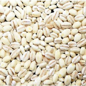 もち麦 5kg アメリカ・カナダ産 保存包装済|manryo