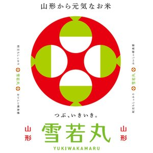 雪若丸 米10kg 山形県産 粒立ちしっかり 令和元年産|manryo