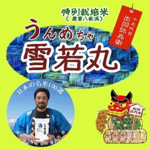 雪若丸 米5kg 山形県庄内産 8割減 特別栽培米 板垣ブランド 令和元年産|manryo