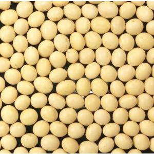青森県産 大粒大豆(おおすず ほか) 30kg|manryo