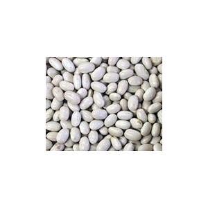 大手亡(白いんげん豆) 5kg (北海道)