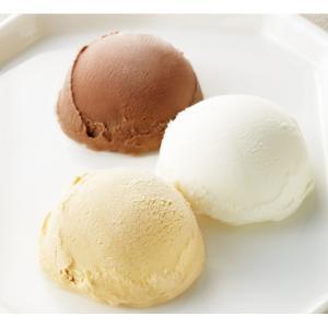 『ベルギー王室ご用達ジャンガレー』監修のチョコレートアイスクリームの詰合せ。3種類のチョコレートアイ...
