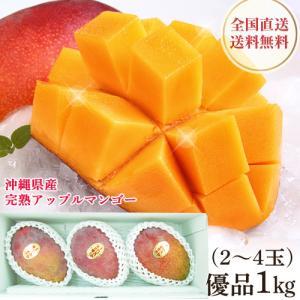 沖縄産 アップルマンゴー 優品 完熟マンゴー 1kg(3〜4玉入り)贈答用 お中元 送料無料 マンゴー mantenmiyakojima