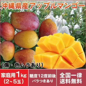 完熟マンゴー 沖縄産 アップルマンゴー 良品 家庭用マンゴー 1kg(3〜5玉入り)傷や色ムラあり お中元 送料無料|mantenmiyakojima