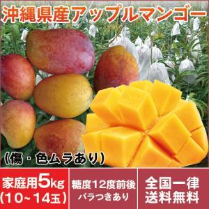 沖縄産 アップル マンゴー 良品 家庭用 訳あり マンゴー 5kg(10〜13玉入り)傷や色ムラあり お中元 送料無料 mantenmiyakojima