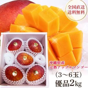 沖縄産 アップルマンゴー 優品 完熟マンゴー 2kg(4〜6玉入り)贈答用 お中元 送料無料 マンゴー mantenmiyakojima
