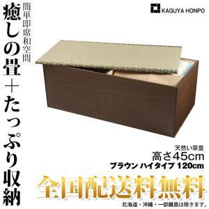 い草畳ユニット [ハイタイプ・幅120cm・ブラウン ] 幅...