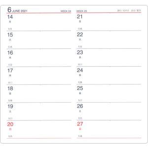 ポイント5倍 2020年度版ハンディピックダイアリー ウィークリー(見開き2週間) スモール E1088 ダイゴー ※16冊までネコポス便可能[M在庫-2-A4] manyoudou 02