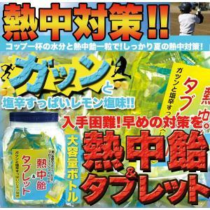 熱中対策【熱中飴&タブレット】計600g大容量ボトル...