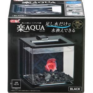 ジェックス 楽アクア ブラック  (8115615) manzoku-tonya