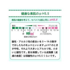 セバメド ウォッシングバー 100g ロート製薬|manzoku-tonya|02