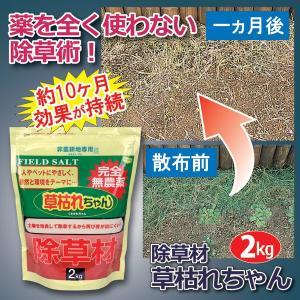 除草剤 ガーデニング 庭 雑草 除草剤 草枯れちゃん 2kg|maone
