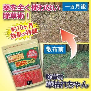 除草剤 ガーデニング 庭 雑草 除草剤 草枯れちゃん 1kg|maone