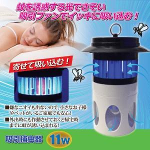 捕虫器 吸引捕虫器 蚊取り|maone