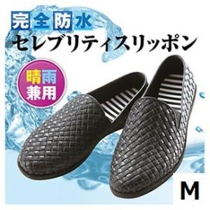 スリッポン セレブリティスリッポン M 靴 レディース  シューズ|maone