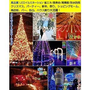 GOODGOODS クリスマス LED イルミネーション ライト 30m 500球 屋外 防水 メモ...