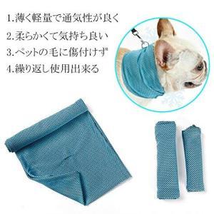 MinniLove 犬 猫 ペット用 冷感マフラー 冷感首輪 ペット体温下げ 軽量 通気性 快適 クール体温下げ (冷感マフラー ブルー、 S)|mapletreehouse