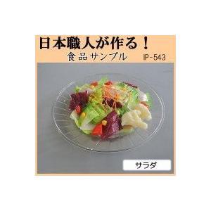 日本職人が作る 食品サンプル サラダ IP-543 mapletreehouse