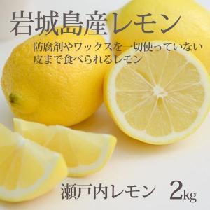 瀬戸内レモン (整品)2kg 家庭用 ハウス栽培・いわぎ島レモン 防腐剤・ワックスなし国産生レモン