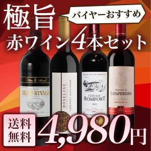 ワインセット 極旨赤ワイン6本セット バイヤーお勧めの赤ワイ...