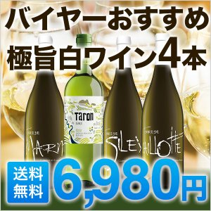 ワインセット 極旨白ワインセット 5本  バイヤーおすすめの...