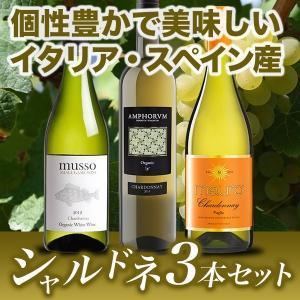 シャルドネ飲み比べ 白ワイン 3本セット 【酒類】