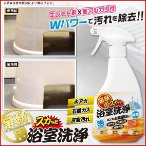 風呂用洗剤 業務用 水垢 石鹸カス 皮脂汚れ 除菌 500ml