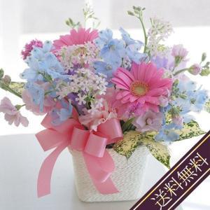 あの人が元気になれそうな花  生花 アレンジメント 送料無料 お見舞い ペット 生花AA☆|marika