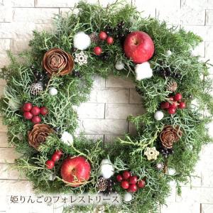 クリスマスリース[メリークリスマスリース] 生 35cm クリスマスリース 玄関 おしゃれ ギフト