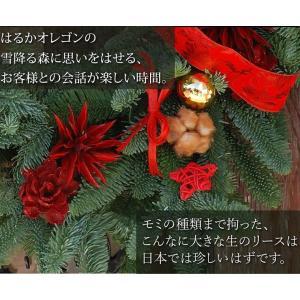 クリスマスリース[ オレゴンモミのエントランス...の詳細画像3