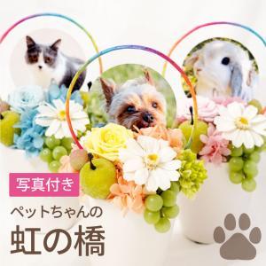 虹の橋-プリザ┃-送料無料 プリザーブドフラワー 仏花 ペット お供え 供養花|marika