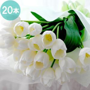 お供え 花『白いチューリップ20本の花束 予約』生花 お悔やみ 花 喪中のはがきをもらった時 お供え 花 喪中 命日 墓前 供養 花|marika