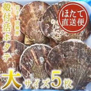 殻付活ホタテ 岩手・宮城産 大サイズ 13cm 5枚
