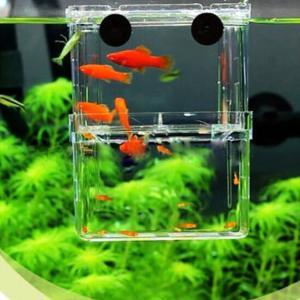 EFORCAR 1PCS 多機能 魚 繁殖隔離ボックス 金魚 水槽 孵化 産卵箱 水族館アクセサリー (S)|maritakashop