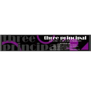 乃木坂46 マフラータオル 3人のプリンシパル