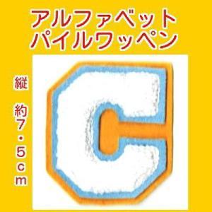 アルファベットワッペン タテ約7.5cmCシロ markers-patch