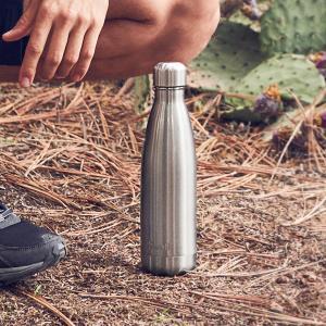 ボトル 17oz 500ml S'well スウェル シマー シルバーライニング 水筒 ステンレス Swell スウエル 日用品 キッチン 台所用品