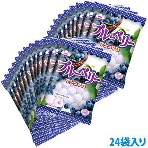 【送料無料】ブルーベリーマシュマロ 2ケース(24袋)|marshmallowland