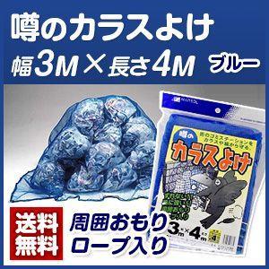 カラス対策・カラスネット 噂のカラスよけ3m×...の関連商品1