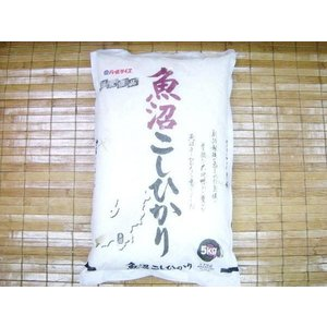 (5■3C) 魚沼コシヒカリ米 【5kg】 29年産 7月【2】/● w4x|mart-net