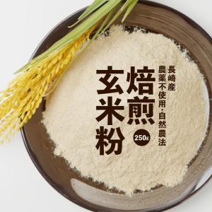 焙煎玄米粉 500g(250g×2袋) 焙煎 玄米粉 無農薬 アレルギー 対応 グルテンフリー パン...