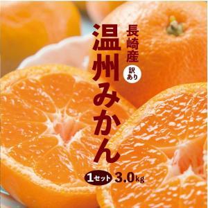 長崎 みかん 訳あり \たっぷり3kgが999円/ 1セット 3kg 規格外 2セットで送料無料 3セットで1セットおまけ 4セットで2セットおまけ蜜柑 ミカン 柑橘