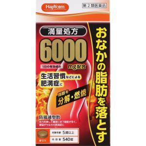 第2類医薬品 HC防風通聖散6000 540錠|marue-drug
