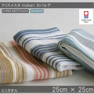 今治タオル ハンカチタオルクリスメスタ イマバリ カパルア ミニタオル おしゃれ デザイナータオル ギフト おしゃれ 日本製 今治タオル認定|maruei-towel