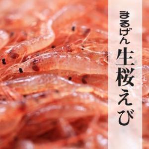 生桜えび250g |静岡県由比産|marugen|09