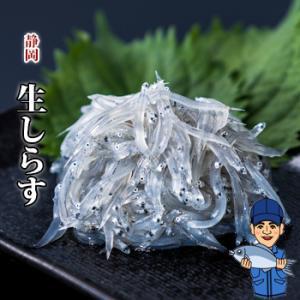 生しらす(生シラス)100g|静岡県産|marugen